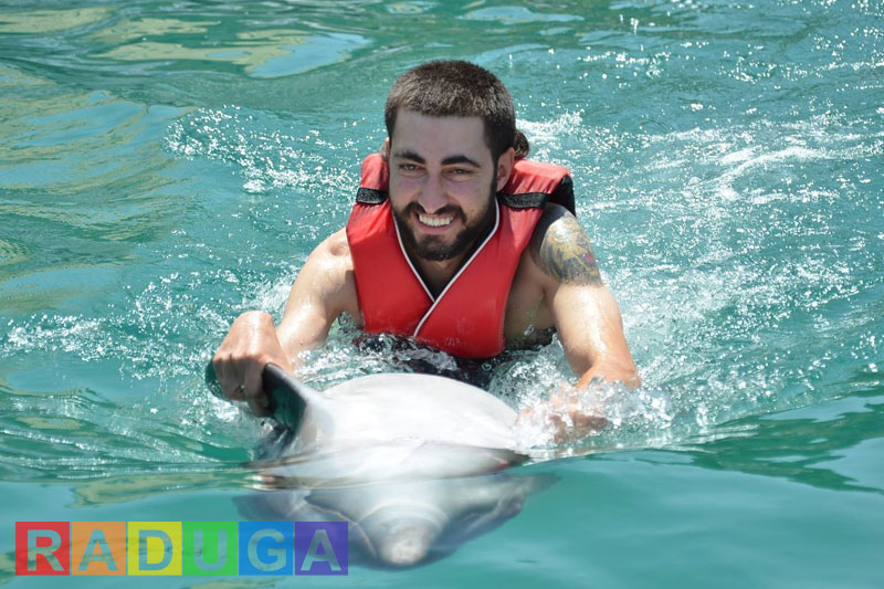Плавание с дельфинами в Бодруме - Программа - Цена и Отзывы